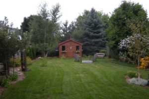 Finished backyard with nice landscaping. A shed is in the middle with some chairs around a fire-pit.