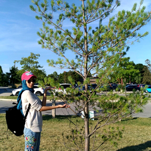 © 2018 Farheen Kadwa Young woman standing by a tree