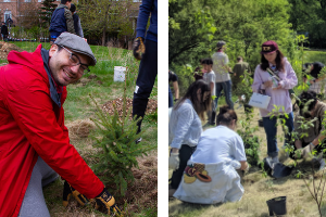 Side-by-side picture of volunteers planting at community planting events