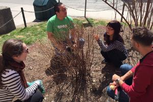 © 2018 Natalie Secen: volunteers outdoor learning to prune