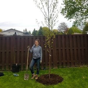 Young woman with a shovel next to a recently planted tree