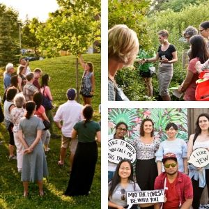 Photo collage. 1) People gathered by a tree on a hill. 2) People looking closely at a shrub. 3) A group of young people pose with funny quotes and speech bubbles.