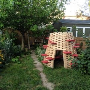 A Toronto backyard with a grown tulip tree and other plants