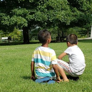 Two boys staring at trees