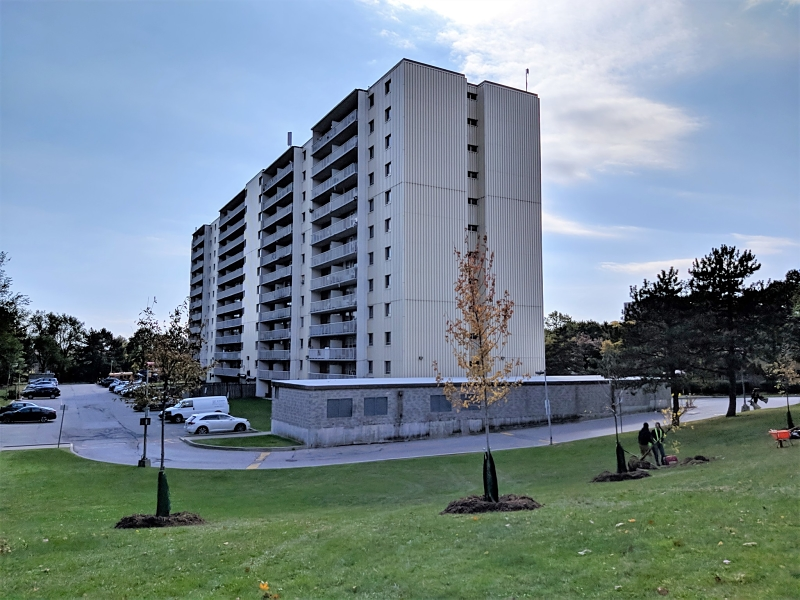 Residential building with trees recently planted around it