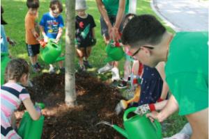 kids watering a tree