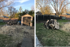 Before photos of a backyard with dead grass, a pile of wood and a shed