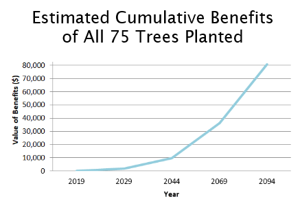 Upward graph of cumulative benefits of all 75 trees from 2019-2094