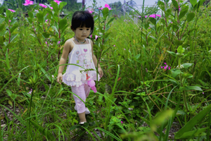 © 2017 Creative Commons Girl walks through flowers