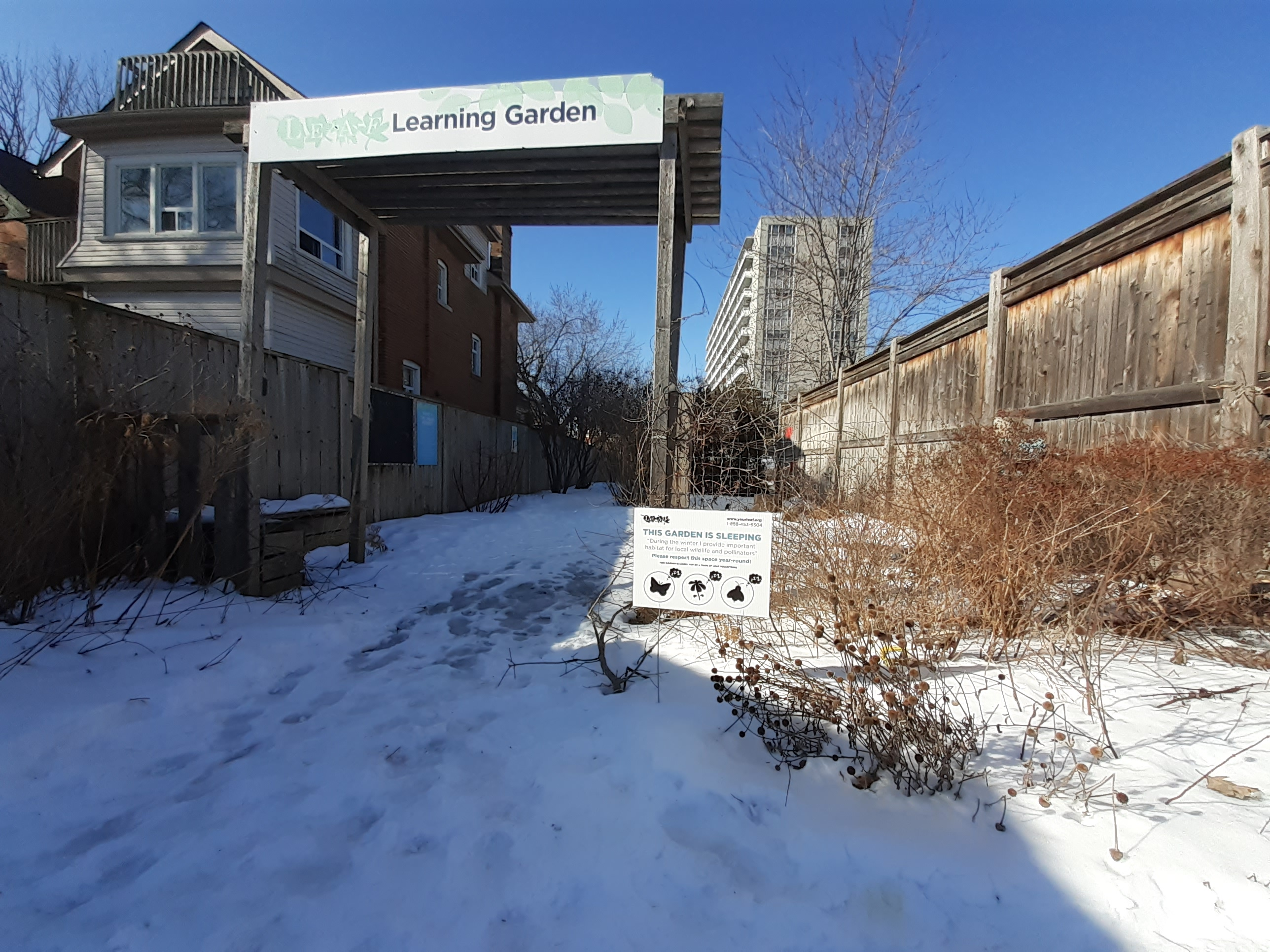 LEAF Learning Garden in the winter