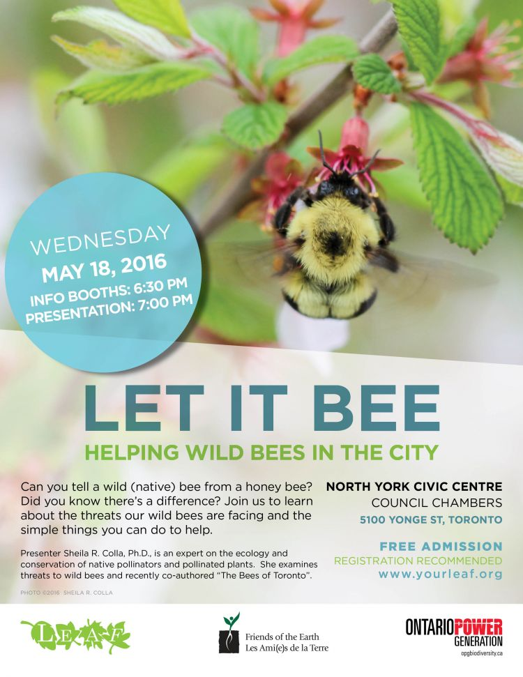 Let it Bee event poster