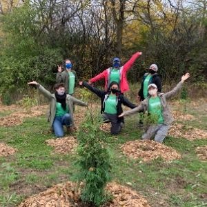 Six people celebrating surrounded by freshly planted trees