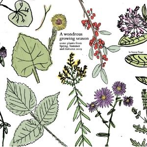 """Front cover of """"A wondrous growing season"""""""