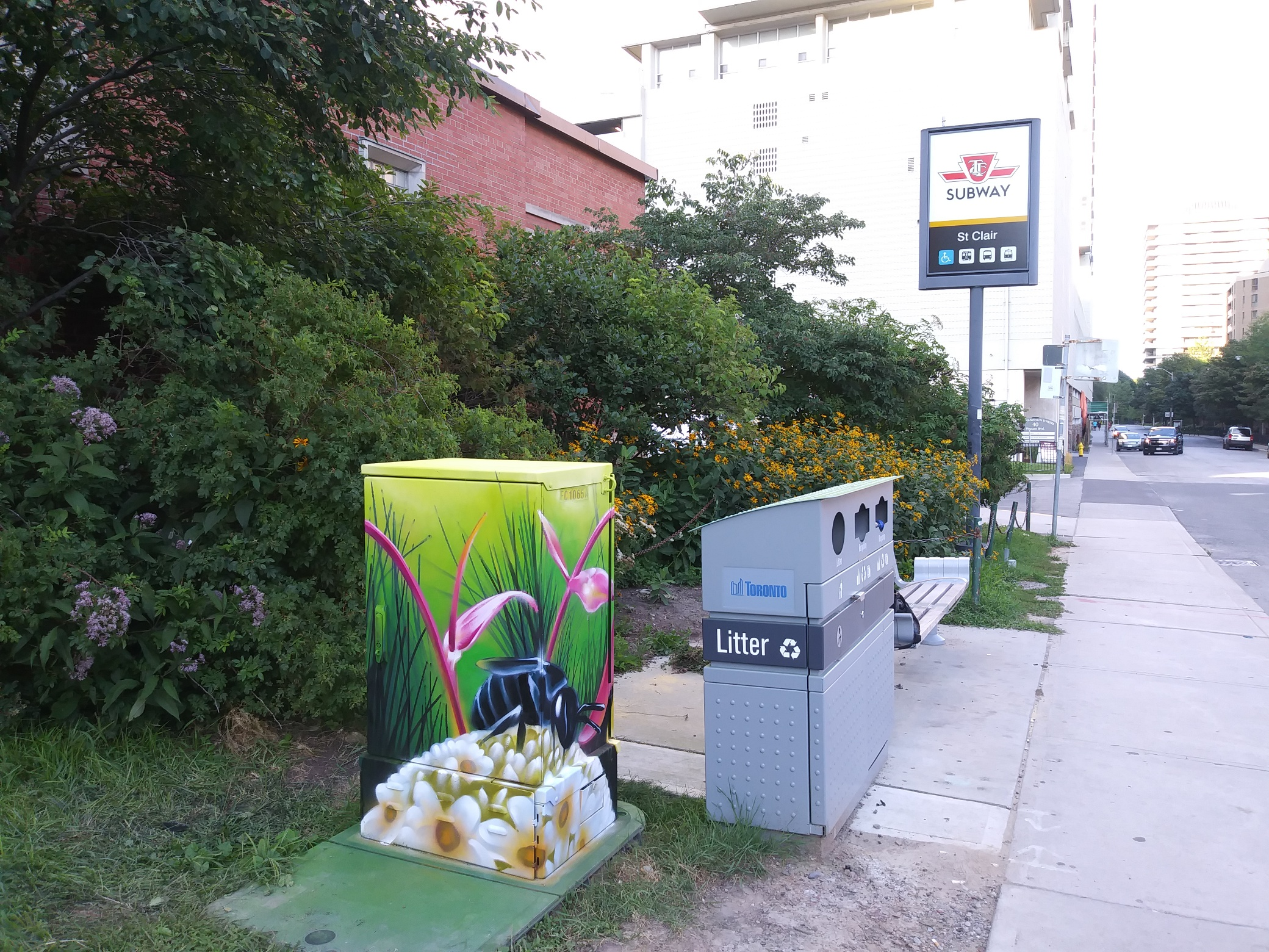 A mural on the Bell box near our St.Clair Garden highlighting local biodiversity and pollinator populations