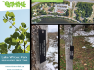 Images from the map and tags on the trees in the park