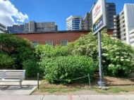 A small, naturalized garden outside the St Clair TTC station