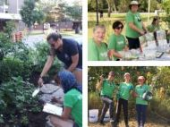 Collage of LEAF volunteers at work in 2019
