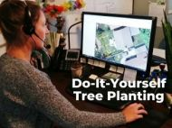 "LEAF arborist on the computer, text reads ""Do-It-Yourself Tree Planting"""