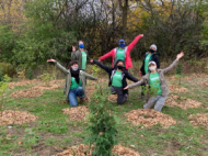 six people celebrating surrounded by young recently planted trees