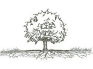 Sketch of a tree with roots extending widely underground