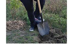 Shovel going into the ground to dig a hole