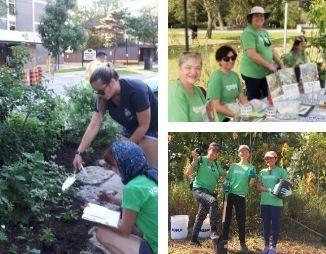 Collage of LEAF volunteers at work in 2019