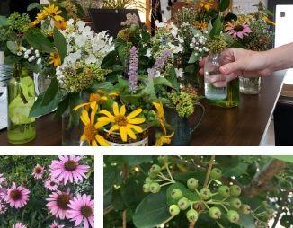 Three native flower arrangements.