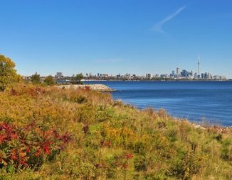 City of Toronto skyline and urban forest