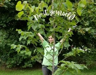 Do It Yourself Tree Planting