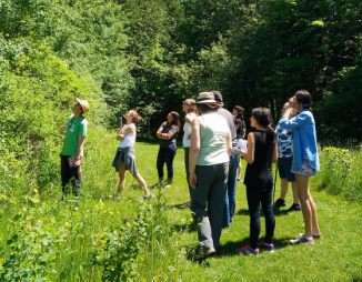 © 2016 LEAF Tree Tenders participants look up as instructor points to tree in a park
