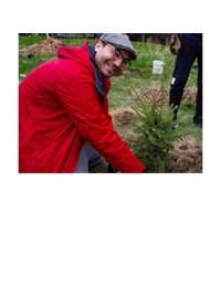 Male volunteer planting a shrub