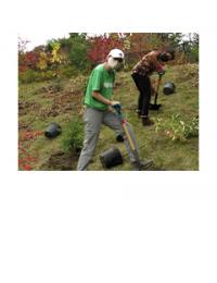 Volunteers digging at plating event