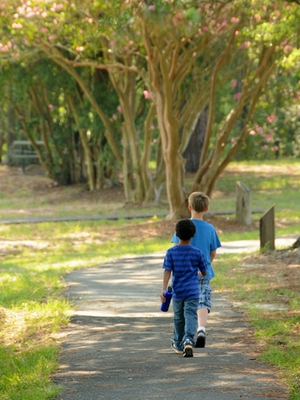 © 2017 Creative Commons Two boys walking through a forest