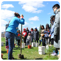 Tree Planting demonstration