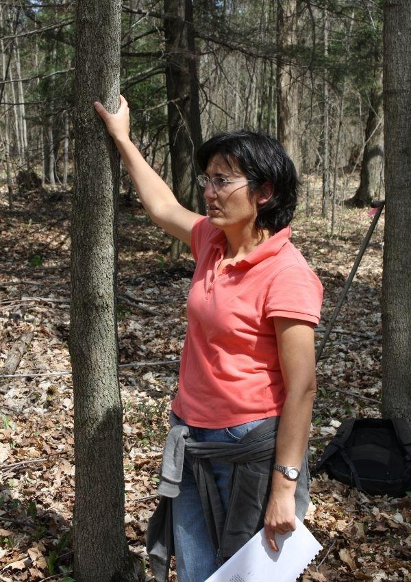 Danijela in the field touching a tree