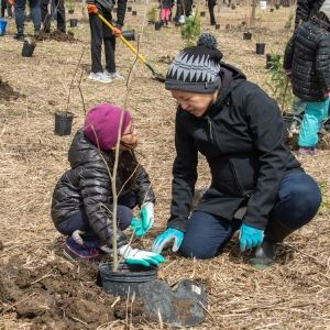Mom and daughter planting a tree